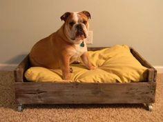 Un lit pour chien tout simple