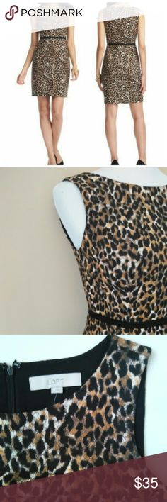 """LOFT LEOPARD DRESS LEOPARD PRINT DRESS / BLACK BELT IMITATION NO SLEEVES .  VERY CUTE FOR ANY OCCASION. PAIR WITH BLAZER ,CARDIGAN OR BLOUSE ON TOP FOR DIFFERENT LOOK NIGHT & DAY OUTFIT . A CLOSET MUST HAVE  LENGTH 36"""" CHEST 34"""". IN EXCELLENT CONDITION LOFT Dresses Mini"""