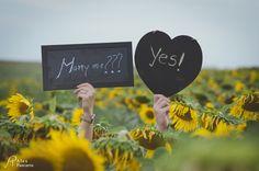 Sunflowers engagement Engagements, Sunflowers, Photo Sessions, Engagement Photos, Lettering, Engagement Pics, Engagement, Letters, Texting
