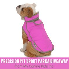 My Canine Kids Precision Fit Sport Parka Giveaway   Pawsitively Pets