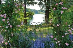 One of the best views of @BlenheimPalace Looking through the Rose Garden pic.twitter.com/1Ywz3eMgr3 crt @VisitBritain #travel #photography