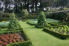 Vegetable_Garden_img