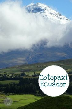 A trip to Cotopaxi National Park: 3 days of hiking, llamas and snuggling with cute dogs by the roaring fire