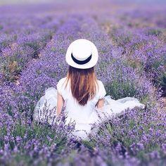 Счастье пахнет лавандой...