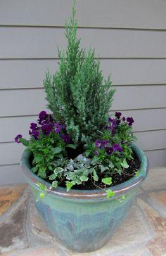 Container Gardening Ideas Front Porch Winter Container Gardens Easy Garden P Winter Container Gardening, Container Plants, Container Design, Garden Care, Gardening Supplies, Gardening Tips, Gardening Zones, Gardening Services, Flowers Garden