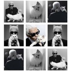 Karl Lagerfeld & his cat, Choupette Karl Lagerfeld Choupette, Karl Otto, Men With Cats, Fendi, Chanel Couture, Cat People, Shades Of Black, Cat Love, Belle Photo