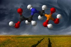 02/20/2014 - Government study finds: Roundup weed killer found in 75% of air and rain samples - wake up, people.