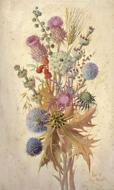 thistle in painting Botanical Drawings, Botanical Prints, Floral Prints, Illustrations, Illustration Art, Crafts For Teens To Make, Celtic Art, Celtic Dragon, Gravure