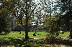 #18 Spend a day on the Quad