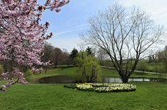 pretty farm pond | Turning farm ponds into attractive areas More