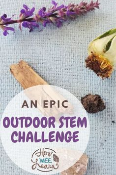 Here's an awesome way to take STEM outdoors! Use a toilet paper roll and a rubber band to make a super fun nature shooter! Kids Learning Activities, Stem Activities, Stem Challenges, Toilet Paper Roll, Nature Crafts, S Word, Kids Playing, Rolls, Ethnic Recipes