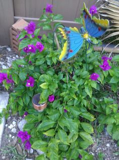 purple flowers with butterfly decoration