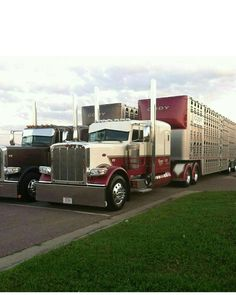 Peterbilt custom 389 with matchin bull hauler
