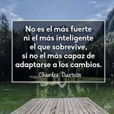 #Frases #inspiracionales #quotes #inspirational