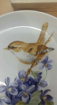 Pablo Acosta Gempeler Pottery Painting, Ceramic Painting, Ceramic Art, Bird Artwork, China Art, China Painting, Painting Lessons, Rock Crafts, China Patterns