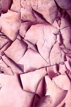 Pink Fracture by Claudia Drossert