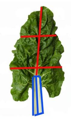 I love this Croatian staple, blitva (swiss chard). Tasty and highly nutritious!