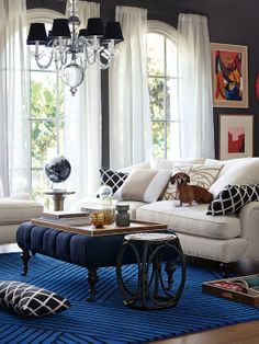 Serena & Lily Living Room with Strata Hand-Tufted Rug in Cobalt