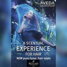 Stop in and try new Hair Purefumes!  #smelllikeaveda #bestofwhitefish #glaciermt #explorewhitefish #whitefish #montana #aveda #reeciasalonandspa #reeciasalon #WhitefishSpa #aveda #hair #hairstyle #eyelashextensions #hairstyles #hairstylist #lashextensions #hairdo #haircut #fashion #stylist #style #hairmen #hairoftheday #avedahair : @reeciasalonandspa