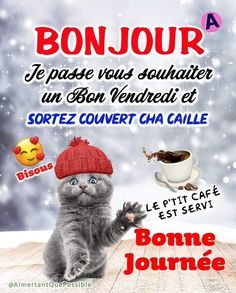 C'est Bon, Gifs, Facebook, Have A Good Night, Good Morning Happy Friday, Friday Images, Humorous Animals, Handsome Quotes, Beautiful Images