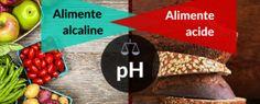 Ulei de cuisoare - beneficii, mod de utilizare si contraindicatii – Natura Vindecătoare Thing 1, Bottle Opener, Barware, Avocado, Lawyer, Tumbler