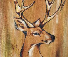 Deer, Stag, Buck, Animal, Watercolor, Painting, Illustration, Art