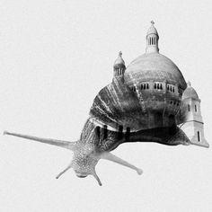Mixed Photos, snail & Sacré-Coeur (Paris)