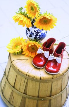 Fall Shoes || Toddle