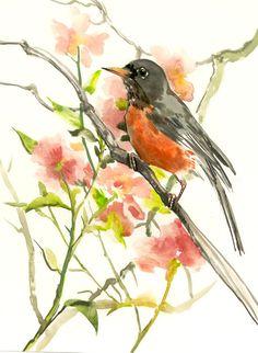 American Robin, 14 X 11 in, original watercolor painting, robin art, robin bird by ORIGINALONLY on Etsy