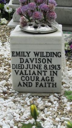 p emily davison. a brave soldier. so grateful to the suffragettes who gave me the right to vote. Famous Feminists, Deeds Not Words, Emmeline Pankhurst, Suffrage Movement, Right To Vote, Famous Graves, Women In History, Women Life, Amazing Women