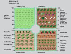Mit Fruchtwechsel zu mehr Erfolg im Gemüsegarten   Februar 2013   Familienheim und Garten