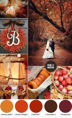 Warm autumnal colors... Gold leaves, orange pumpkins, red apples, burgundy and chocolate and navy