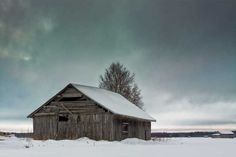 Barn And Birch Tree On A Cold Winter Day