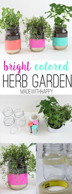 Bright Colored Herb Garden - Mason Jar Crafts - Easy Pop of Color - Spring Garden - www.madewithHAPPY.com