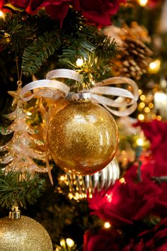 Make Glitter Glass Ball Ornaments - on HGTV- Designer Robin Baron shows how to dress up glass bulb ornaments with glitter for the holiday season. Red And Gold Christmas Tree, Gold Christmas Ornaments, Beautiful Christmas Decorations, Christmas Colors, Christmas Holidays, All Things Christmas, Christmas Crafts, Ball Ornaments, Glitter Ornaments