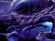 Dolphin Wallpaper - Bing Images