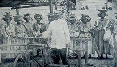 50ste viering afschaffing slavernij - Jacob Morgenstond en marktvrouwen 1913 - Suriname
