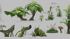 Plants ✤ || CHARACTER DESIGN