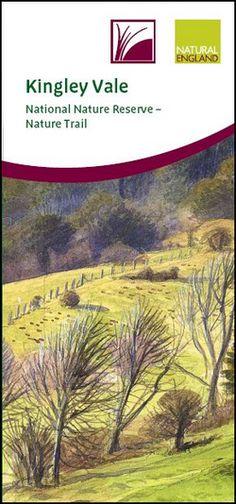 Kingley Vale National Nature Reserve – Nature Trail leaflet - NE403