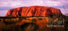 First Light - Uluru, Australia by Lexa Harpell