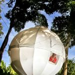 Cocoon Tree, A Cozy Spherical Tent That Hangs From Trees