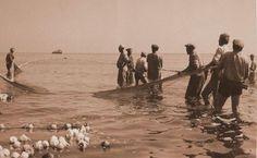 Pescarii secolului trecut Danube Delta, City People, Freshwater Fish, Bird Species, Continents, Romania, Fresh Water, Past, Exotic