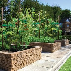 Vegetable Garden Design Ideas, Pictures, Remodel, and Decor / permanent stone beds with stone walkway