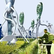 Image result for greening-cities
