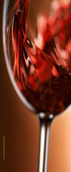 Pouring Red wine Photography