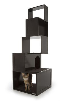 Designer Pet Products Sebastian Cat Tower, Give your cat a place to perch and climb that looks great in your home. This elegant wall-mounted cat tree looks like a book shelf in your house, and satisfies your cat's natural instinct to be up high. The Sophia Cat Tree comes in a set of two pieces that can be arranged in various configurations. One piece has an opening for your cat to climb through and the other piece has a closed off area for decorative items.