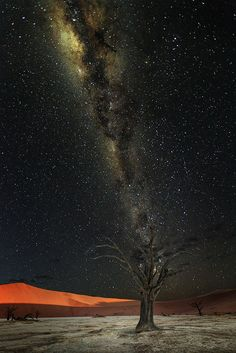 "etherealvistas: "" Deadvlei Milky Way (Namibia) by Victor Carpentier || Website """