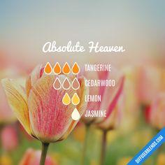 Absolute Heaven — Essential Oil Diffuser Blend