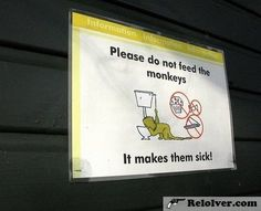 Funny Animal Signs (Funny Animals) - http://relolver.com/funny-animal-signs-3/