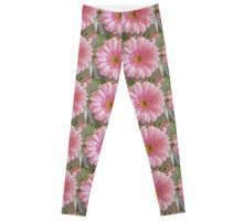 'Pink Gerbera' Leggings by ellenhenry Pink Gerbera, Pink Carnations, Floral Photography, Bunch Of Flowers, Pink Leggings, Knitted Fabric, Pale Pink, Chiffon Tops, Classic T Shirts